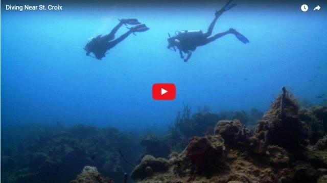 world class scuba diving in St Croix US Virgin Islands
