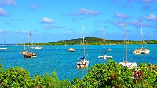 Do You Need A Car In Us Virgin Islands