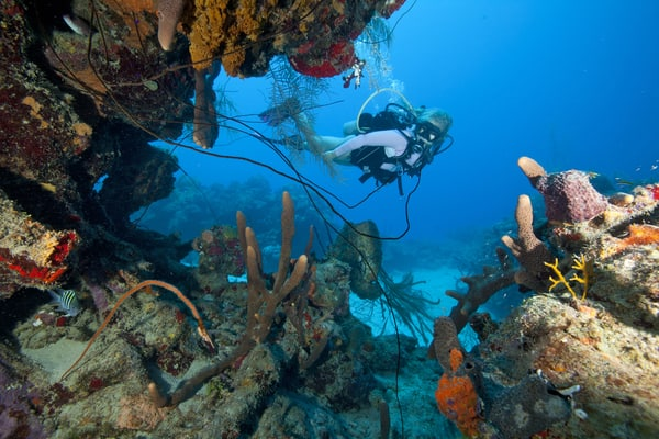 usvi diving and wreck diving