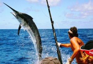 deep sea fishing charters in St Croix USVI