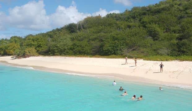 Turtle Beach Buck Island St Croix Us Virgin Islands