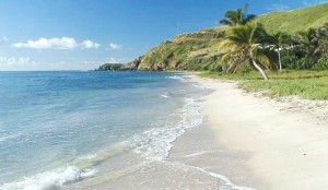 Grapetree Beach St Croix USVI